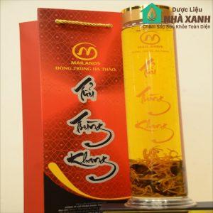Rượu Đông Trùng Hạ Thảo Tửu Trùng Khang